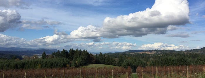 Eminent Domaine is one of Portland wine country.