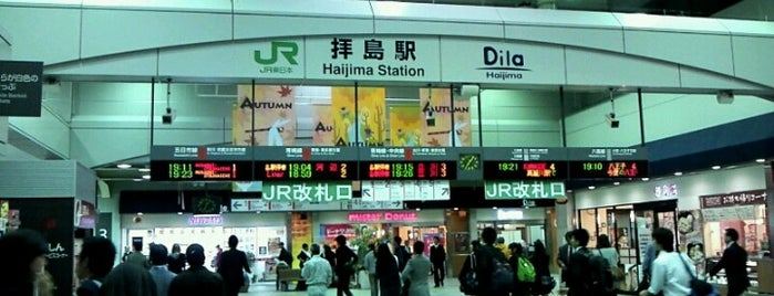 Haijima Station is one of JR 미나미간토지방역 (JR 南関東地方の駅).