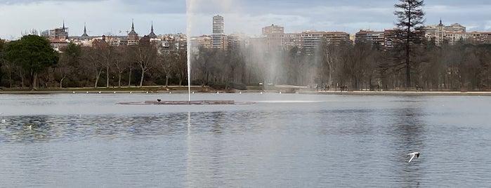 Lago de la Casa de Campo is one of Orte, die Rafael gefallen.