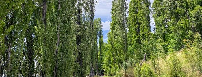 Lake Wanaka is one of Best of NZ - South Island.