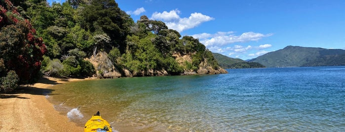 Malborough Sounds Adventure Company is one of Best of NZ - South Island.