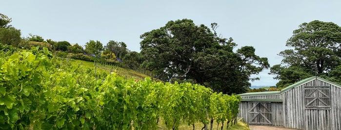 Kennedy Point Vineyard is one of Best of: NZ - North Island.