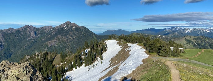 Hurricane Ridge is one of Off-Grid Birthday.