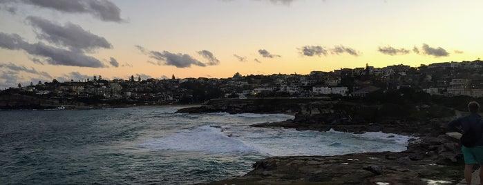 Bronte Coastal Walk is one of Best of: Australia.