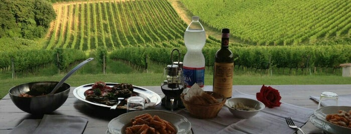 Fattoria La Loggia is one of Chianti Classico Tasting at Winery.