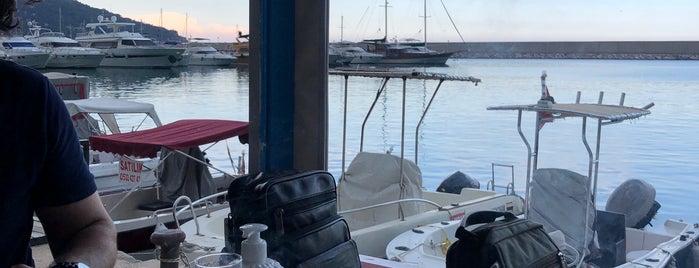 Antalya Balıkçı Barınağı is one of CHECK-IN EVERYDAY 😗.