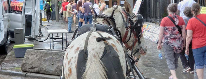 French Quarter Horse Carriage Ride is one of New Orleans.