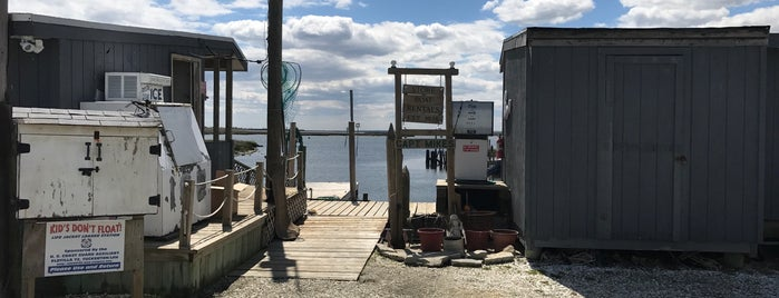 Capt Mike's Marina is one of Dirty Jersey.