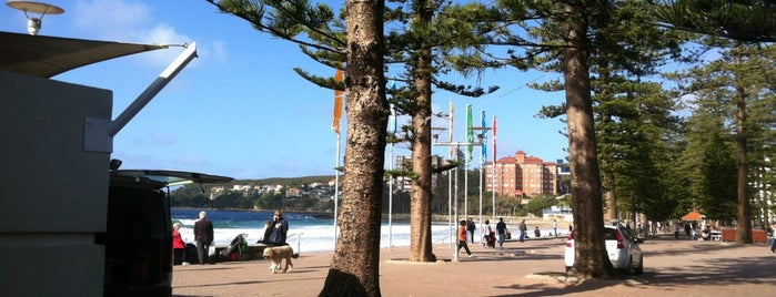 Manly Beach is one of Sydney, NSW.