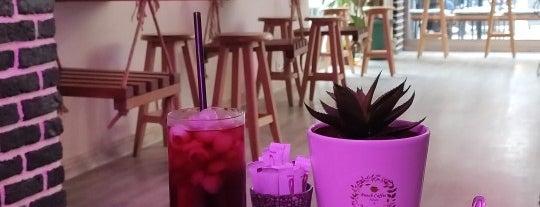Punch Coffee House is one of Kahveci & Fırın & Çaycı.