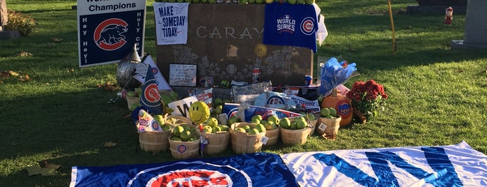 Harry Caray's Grave Site is one of Chicago Part II.