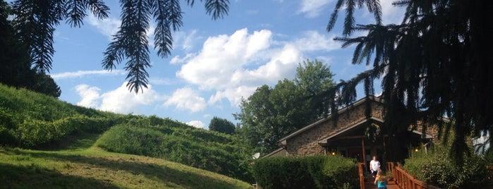 Blue Mountain Vineyards & Cellars is one of Wineries.
