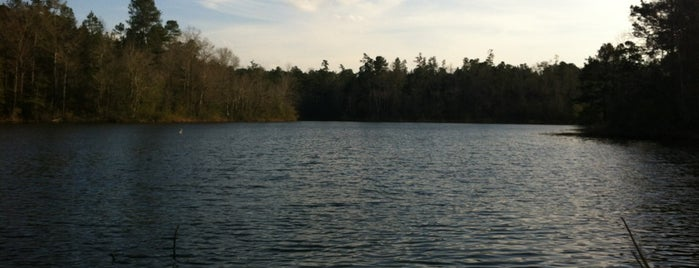 Lake Thoreau is one of Locais curtidos por Ryan.