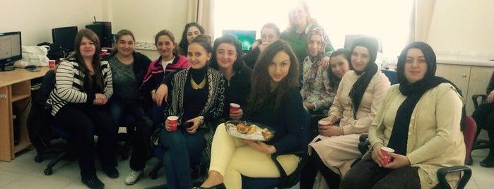 Nafiye ve Hüseyin Küçükoğlu Halk Eğitim Merkezi ve Akşam Sanat Okulu is one of Lieux qui ont plu à Hcr  ♥.