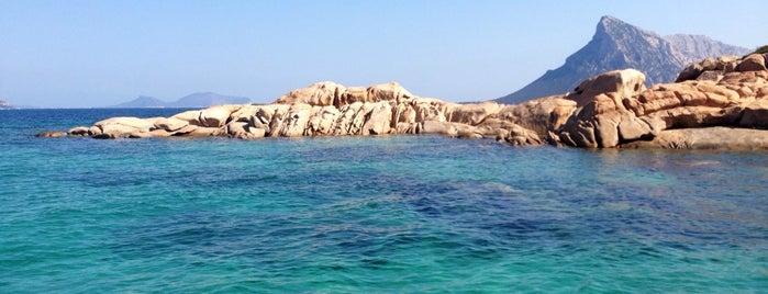 Spiaggia della Tartaruga is one of Posti che sono piaciuti a Dario.