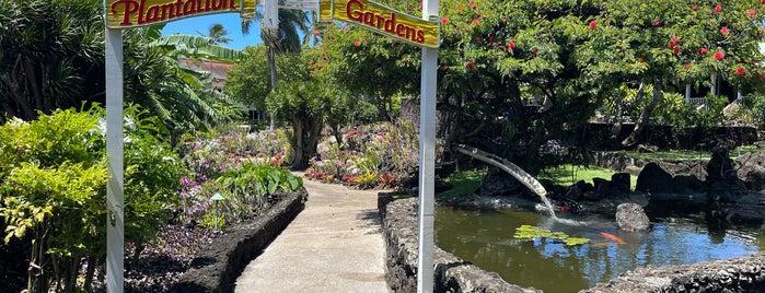 Plantation Gardens is one of Kauai To Do.