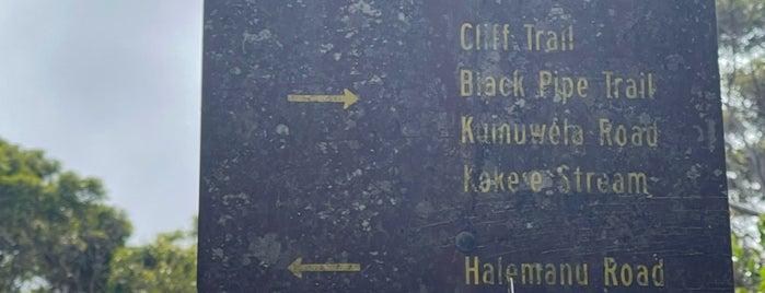 Waimea Canyon Trail To Waipo'o Falls is one of Hawai'i.