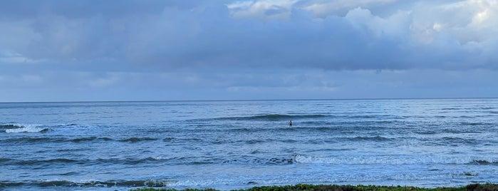 Kekaha Beach is one of HI 2K18.