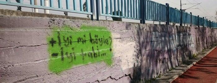 efeler kosu yolu is one of Işıkさんの保存済みスポット.
