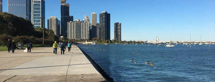 Chicago Lakefront Trail is one of Taniaさんのお気に入りスポット.