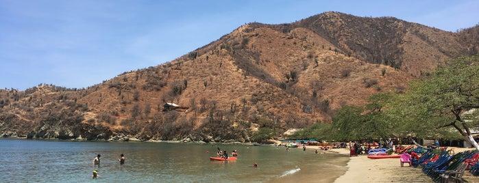 Playa Grande is one of Tempat yang Disukai Tania.