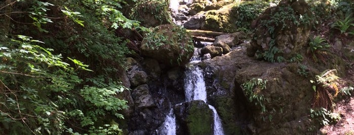 Cataract Falls is one of To-Do in San Francisco.