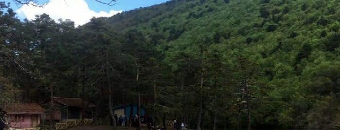 Amasya - Borabay Gölü is one of Kamp.