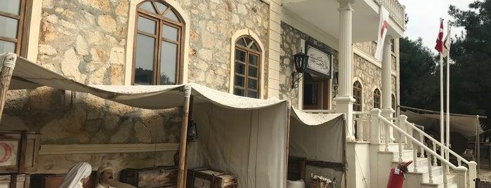 Alçıtepe Köyü Canlı Tarih Galerisi is one of 'Özlem 님이 좋아한 장소.