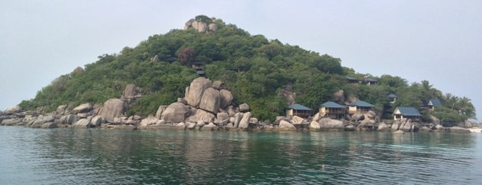 Koh Tao is one of Great Scuba.