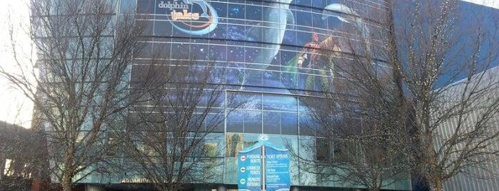 Georgia Aquarium is one of All-time favorites in United States (Part 2).