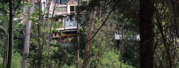 Casa de la Tia Toña is one of Ciudad de México y alrededores.