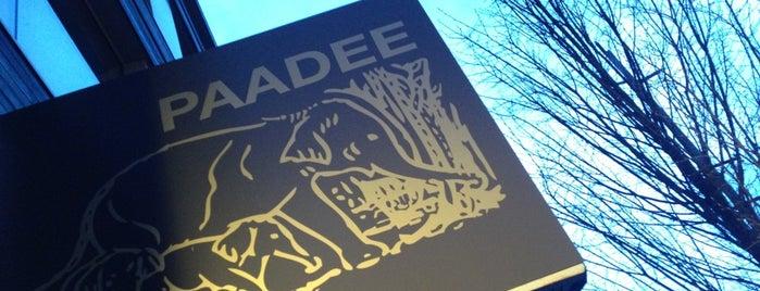 PaaDee is one of Orte, die Nelly gefallen.