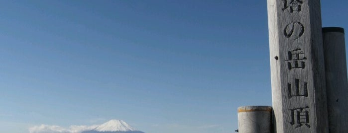 Mt.Touno-dake is one of 丹沢・大山.