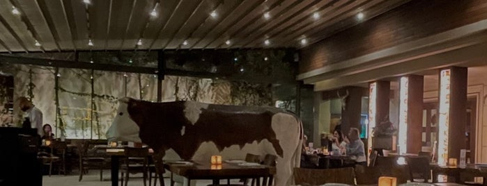 Lucca Steak House is one of Amman.