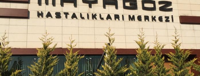 Özel Maya Göz Merkezi is one of Serko 님이 좋아한 장소.