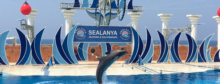 Sealanya Seapark & Dolphinpark is one of Serko 님이 좋아한 장소.