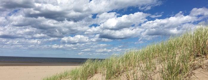Parlee Beach is one of Jav : понравившиеся места.