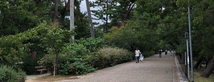 夙川橋 is one of 夙川にかかる橋.