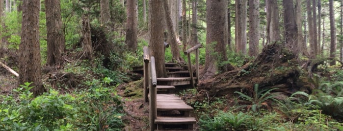 Cape Flattery Trail is one of Olympic National Park.