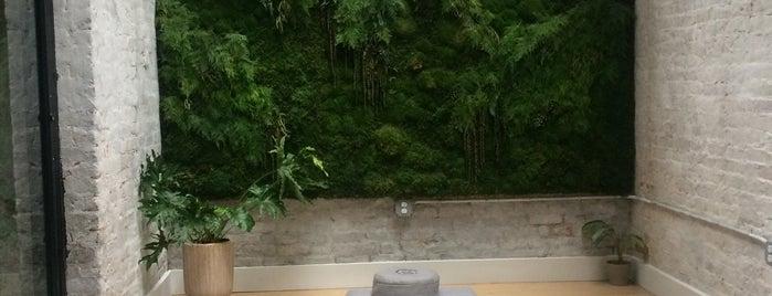 MNDFL Meditation is one of Locais curtidos por Dina.