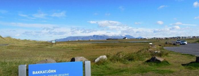 Bakkatjörn is one of Reykjavík City Guide.