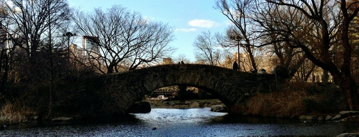 Gapstow Bridge is one of Week NYC.