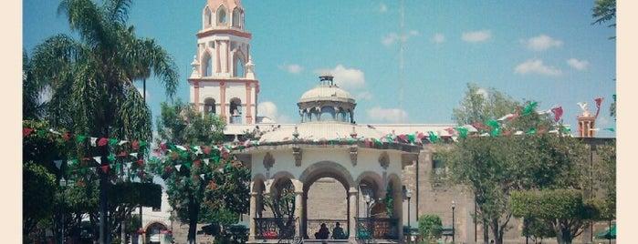 Jardín Hidalgo is one of Tlaquepaque.