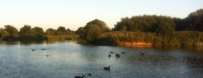 South Norwood Country Park is one of Natural London.
