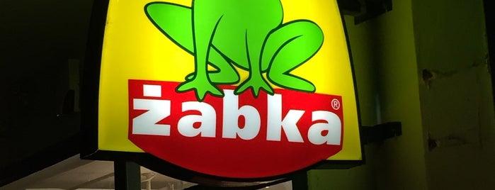 Żabka is one of Wroclaw-erasmus.