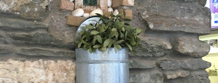 Έδεσμα is one of Greece 2017.