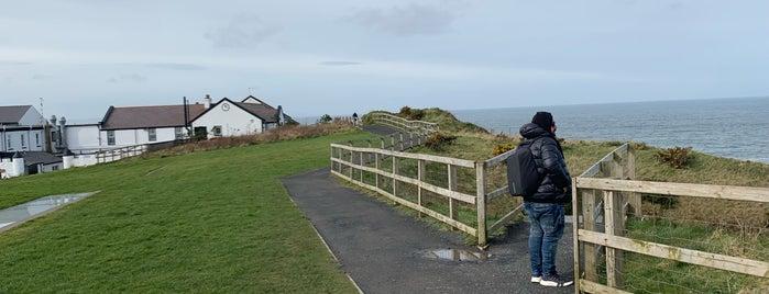 Giant's Causeway is one of Orte, die Silvia gefallen.