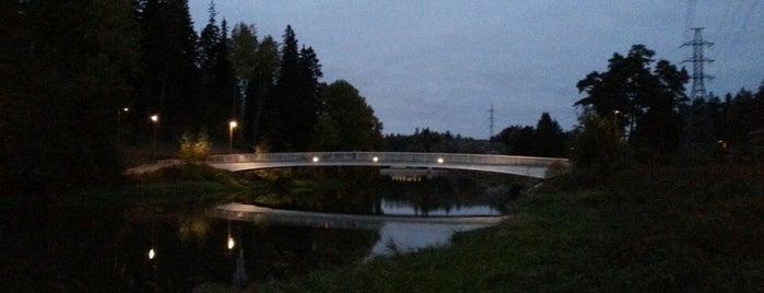 Viikinmäen kevyen liikenteen silta is one of Ida 님이 저장한 장소.