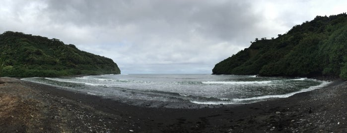 Black Sand Surf Cove is one of Trips.