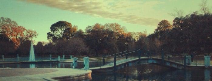 Hampton Park is one of Lieux qui ont plu à Dee.